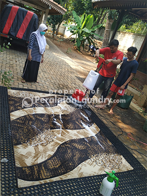 paket usaha cuci karpet