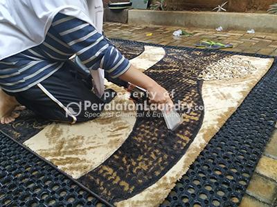vaccum extact untuk mencuci karpet